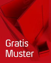 0618_stoerer_integralis_musterbcher